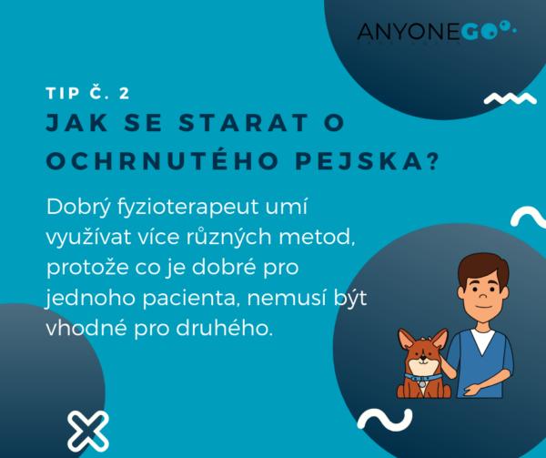 Jak se starat o ochrnutého pejska?