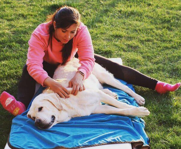 Dopřejte svému psímu kamarádovi relax a uvolnění!!!