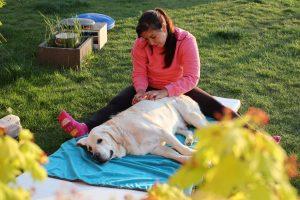 masáž rehabilitace psů u Filípka (2)